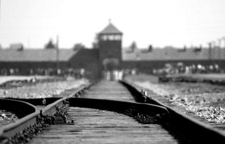מה הביא לעלייתו של היטלר לשלטון?