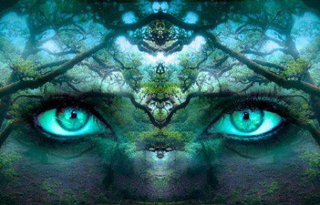 איך מפתחים תודעה?