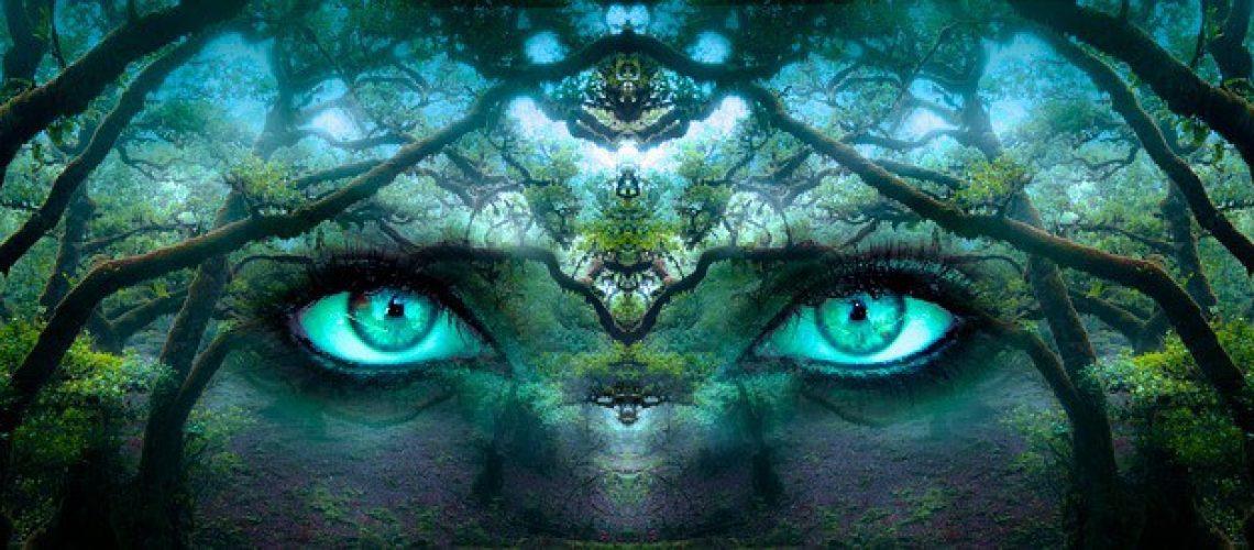 איך מפתחים תודעה