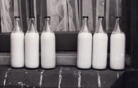חלב טרי לעסק – למה זה מצופה שכל משרד ידאג לאספקת תה שוטפת