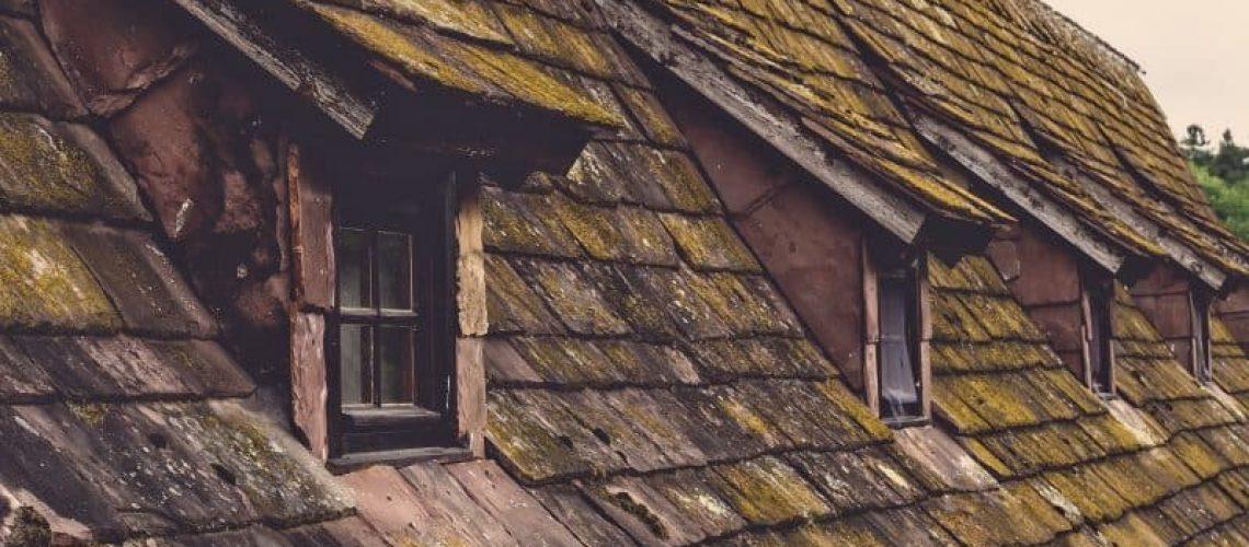 זיפות גגות