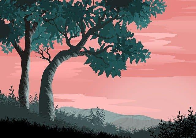 ציורי טבע – עיצוב יוקרתי במעט כסף