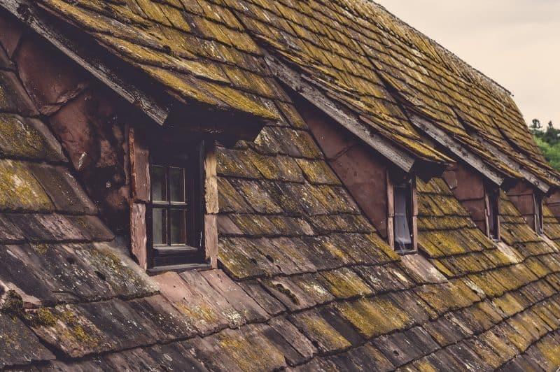 3 דברים שיש להכיר לגבי זיפות גגות