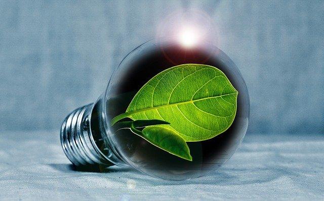 אנרגיה ירוקה: האם זו השקעה משתלמת לטווח ארוך?