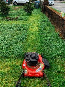 מכסחת דשא נטענת