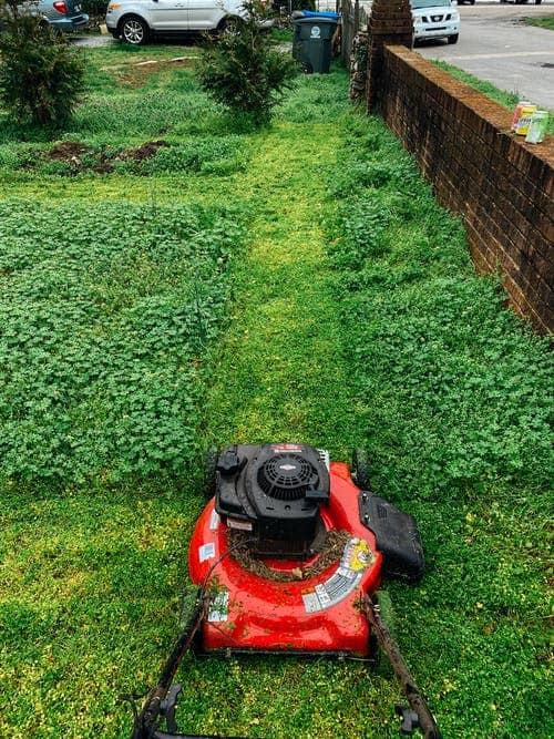מה היתרון של מכסחת דשא נטענת על פני האחרות?