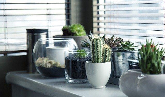 פתרונות הצללה לחלונות