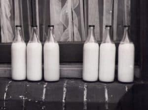חלב טרי לעסק